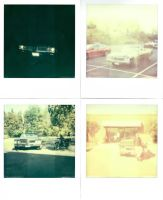 Polaroid Pictures by rioross