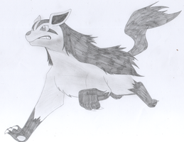 Mightyena running by katebushfanatic