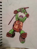 Donatello Fighting by MyGreenApplePhotos