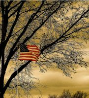 The Star Spangled Banner by PhantomFlowers