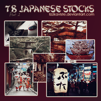 78 Japanese Stocks Part 2 by LizzKaviste