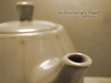 Anatomy of a Teapot: Photo 5 by sie777