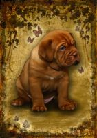 Puppy Dogue De Bordeaux. by LogartRU