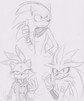 Sonic Boom: bonus Silver and Blaze by MakTheHedge01