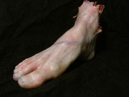 Severed Foot 2 by Kyle-312