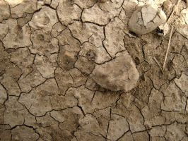 Cracked Mud Texture 2 by Jenna-RoseStock