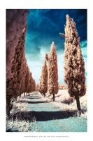 Tuscany IR - III by DimensionSeven