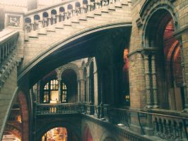 London Museum. by iNaturel