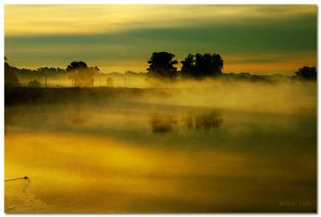 i'm not scared by werol