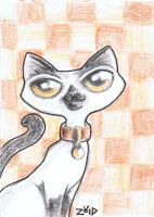 Funny cat siamese ACEO by KingZoidLord
