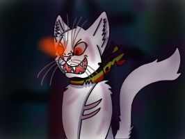 Prussia Cat Be Prepared by TherealNightstripes