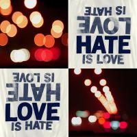 Love and Hate by sh-o-o-sh