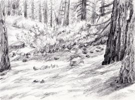 Forest Sketch by KingVahagn