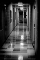 The Hall by er111a
