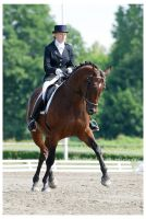 AMP dressage final 1 by paula2206-photo