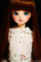 Face-up: Bluefairy Sarang by cats10