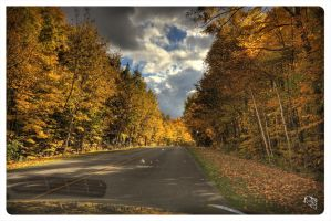 Gatineau park HDR from my car by AmirNasher