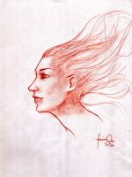 Facing the Wind by JessicaDru