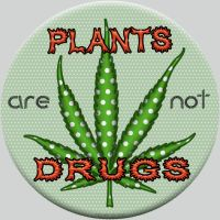Plant v. Drug Button by raven-haven-creation