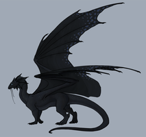 Temeraire by annicron