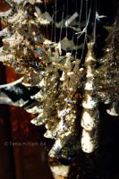 christmas trees by spiti84