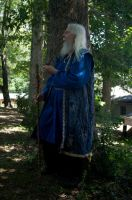 2014-08-13 Wizard in Blue 11 by skydancer-stock