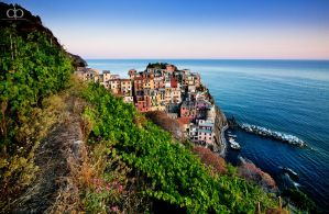 Manarola by Dapicture
