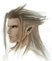 Xehanort aka Xemnas WIP by Long4Redemption