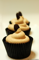 Mocha Cupcakes by munchinees