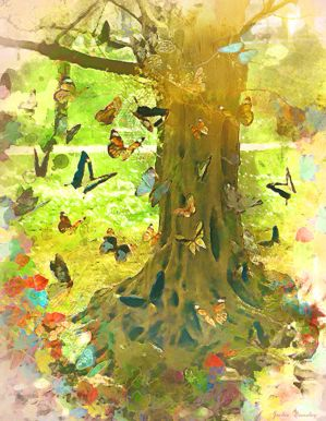 The Butterfly Tree by JackieCrossley