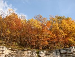 Autumn Cliff Stock Scenery 12 by FantasyStock