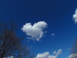 Heart in the Sky by assassin4