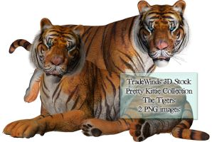 TW3D Two Tigers by TW3DSTOCK