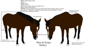 Mallory ref by alicesapphriehail