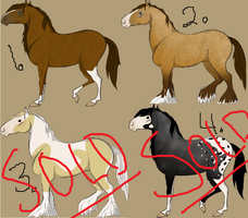 Horse Adopts CLOSED by FlipsAdopts
