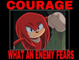 Courage - Knuckles by animorphs5678
