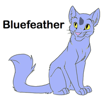 Bluefeather Cat Breedable by WarriorCatLuver123