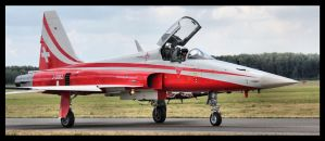Patrouille Suisse F-5E Tiger II by Oski666