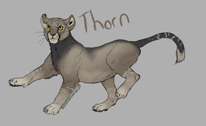 Thorn Reference by Allixi
