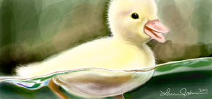 Duckling by LaurenJohnson94