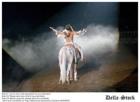 American Indian- AN Show8 by Della-Stock