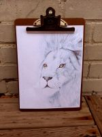 Lion Pencil Drawing by snagzd