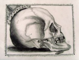 Skull (side view) by NicoleZepeda