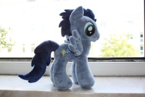 Soarin Plushie by Siora86