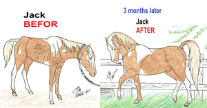 Jack the befor and after by ToxicDragonBlood
