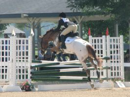 Show Jumping 2 by MorphineStock
