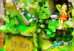 Believe (in Fairies) by sioranth