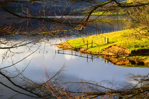 The LadyBower by Dud3Face