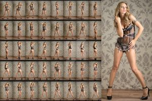 Stock: Alina Lingerie Standing Poses - 41 Images by stockphotosource