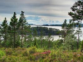 Karelian nature by DeingeL